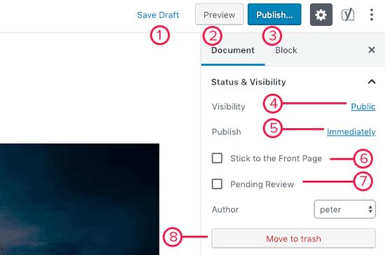 Como adicionar um post no WordPress e otimizar o SEO (Gutenberg) 17